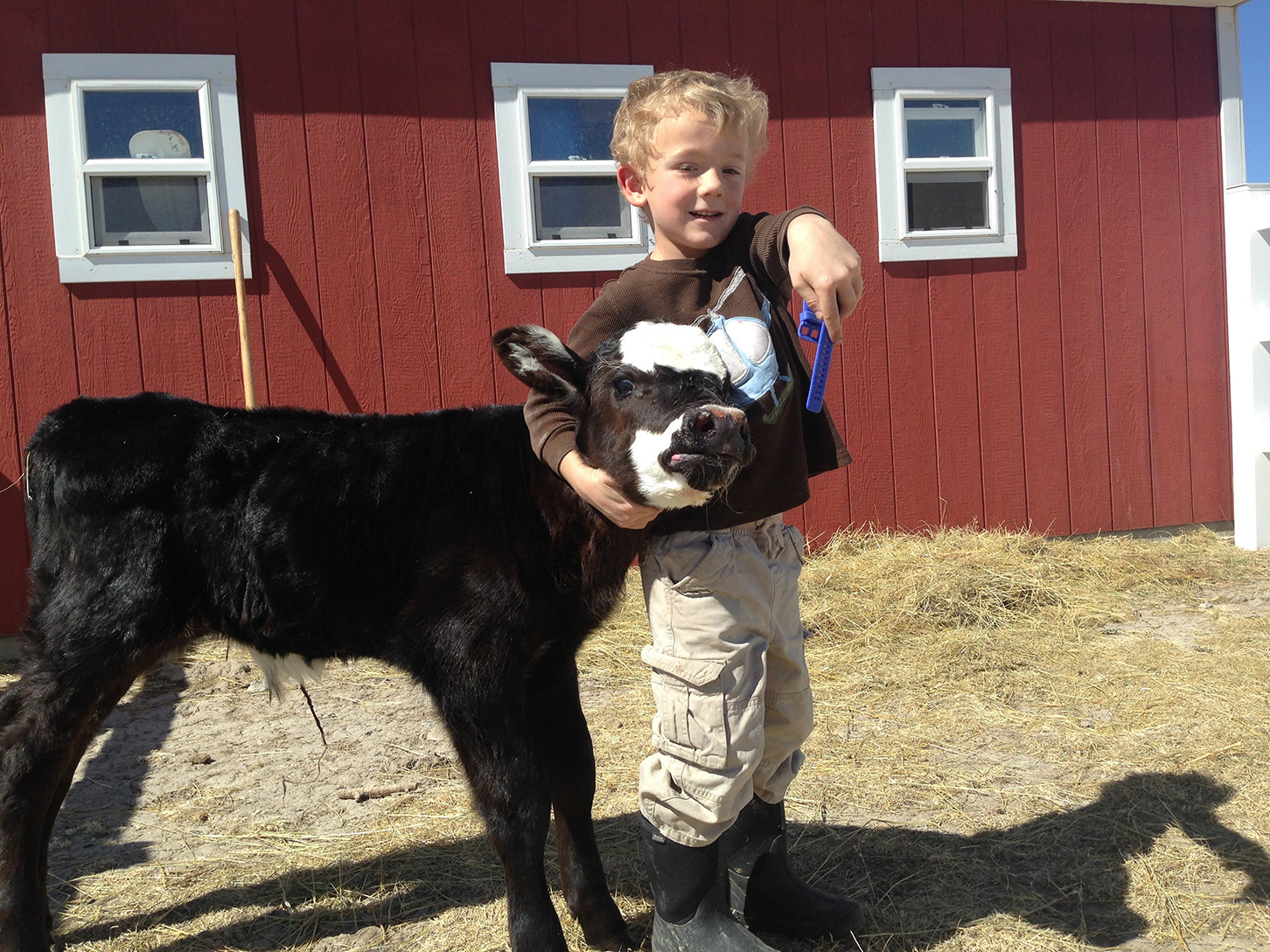 Little boy holding the calf head in front of a red building with windows